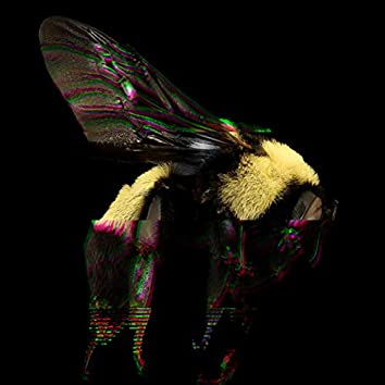 Young Bumble Bee (feat. Roscoe Burnem)
