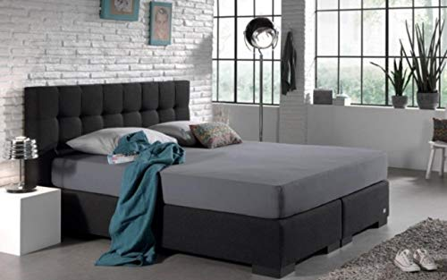 EHD - Fundas de almohada de algodón egipcio de 400 hilos, Gris, Oxford Pillowcase Pair