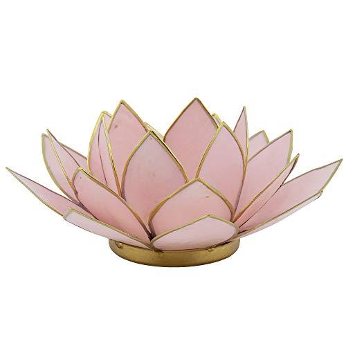 Lotus Teelicht rosa aus Capiz Muschel - Natur Qualität Kerzenhalter, Windlichter, Teelichthalter - Dekoration 16 cm x 16 cm x 7,5 cm