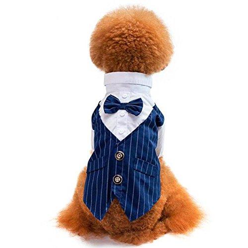 Yueunishi Hund Tuxedo, Hund Kostüme Shirt Anzug, Anzug Schlucken, Hochzeitsanzug Kleidung mit Einer Fliege, 2 Farben 5 Größen (XXL, Blau)