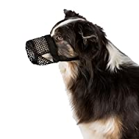 The lateral opening also allow you to give your dog a treat so training can continue while using the protection. There is no problem with panting, sniffing or drinking as the lateral openings allow the dog plenty of freedom. It prevents the dog from ...