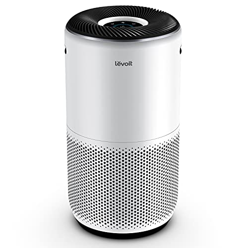 Top 18 Best Air Purifier For Allergies Review Of 2021 Reviews