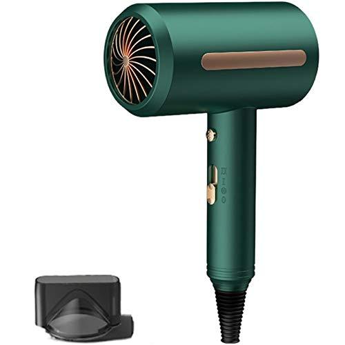 FRTG Secador de Pelo de salón silencioso, secador de Pelo de Velocidad y Calor Ajustable, secador de Pelo de Iones, Secado rápido Profesional con 1 Boquilla de Modelado,Verde