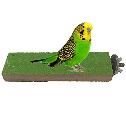 Keerse Holz-Plattform für Vogelkäfig, Spielzeug für Vögel, Papageien, Aras, Graupapageien, Wellensittiche, Sittiche, Nymphensittiche, Unzertrennliche, Finken, Zubehör