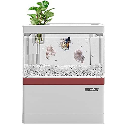 Acquario Tropicali Acquario per pesci rossi con luci LED incorporate e Pompa dell Acqua Light Regalo per bambini Uomo Donna Home Deco per camera 3L