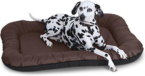 aufblasbares hundebett