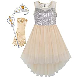 Beige Set With Sequin & Mesh Princess Tulle Dress
