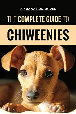 The Complete Guide to Chiweenies Finding Training Caring for and Loving your Chihuahua Dachshund product image