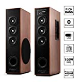 OBAGE DT-2605 Home Theater Tower Speaker with Bluetooth 5.0, USB,MMC,FM