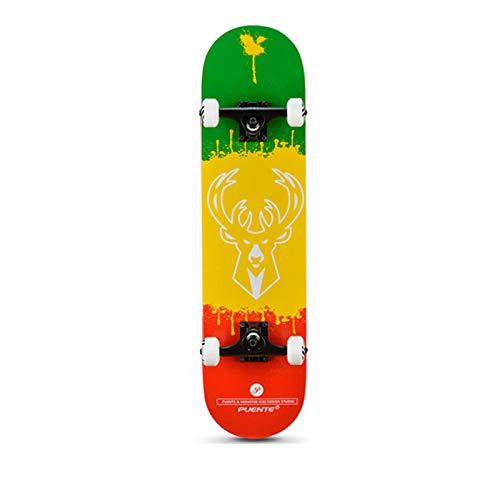 Kinderroller, Longboard Skateboards,Skateboard Pro 31 Zoll Komplette Skateboards für Teenager Anfänger Mädchen Jungen Kinder Erwachsene, 7 Layer Maple Deck Concave Skateboard-C