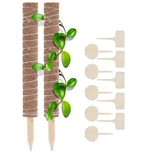 2 Stück Pflanzstab Kokos, mit 10 Holzetiketten, Rankstäbe Rankhilfe Blumenstab, für Pflanzenname, Pflanzzeit, aus Natürlicher Kokosfaser, Verlängerbar, für Dekoration (50cm)