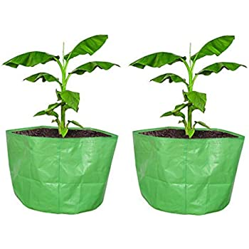 "COIR GARDEN Terrace Gardening HDPE Grow Bags Bigger Sizes for Banana, Papaya Plants, Big Plants, 250 GSM (24""x24"" inches) - Pack of 2"