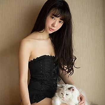 My Kitty Kat