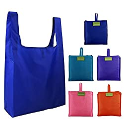 Environmentally friendly reusable grocery bags.