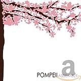 Songtexte von Pompeii - Assembly