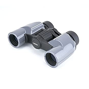 Carson Mantaray 8x24mm Porro Prism Compact Binoculars For Travel Camping Hiking Bird Watching Sporting Events Concerts and Outdoor Adventures  MR-824   Black
