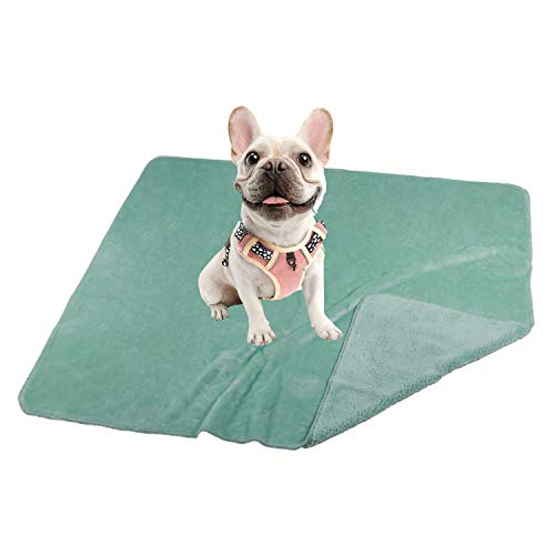 "SOCIALCOMFY 30"" x 40"" Waterproof Dog Blanket Pee Proof Pet Blanket for Bed, Couch, Sofa Washable Plush Sherpa Furniture Protector Cover Liquid Resistance Blanket for Dogs, Cats and Puppies Mint Color"