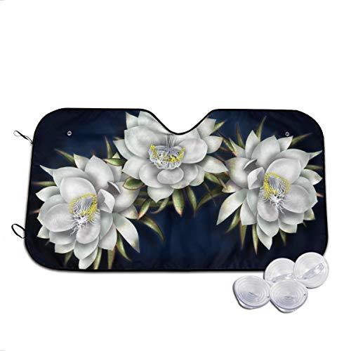 Rterss witte bloem cactus in volle bloei 's nachts aangepaste voorruit zon schaduw vizier voorraam glas voorkomen de auto van verwarming tot binnen