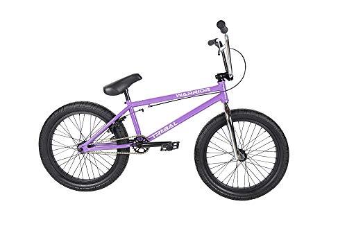 Tribal Warrior BMX Bike - Galaxy Mettalic