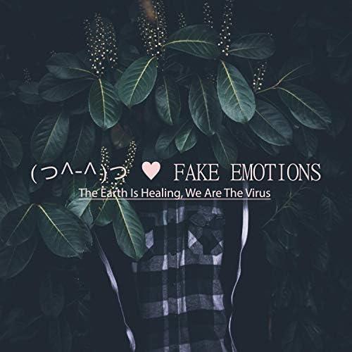 Fake Emotion
