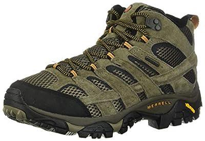 Merrell Men's Moab 2 Mid Waterproof Hiking Boot (10 D(M) US, Walnut)