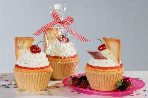 Witzige Spardose Happy Birthday Muffin Torte Cupcake Sparschwein Geldgeschenk Urlaubskasse Trinkgeld Geburtstag