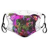 Cubierta facial de moda a prueba de sol Bandana para hombres y mujeres-Staffordshire Bull Terrier Pop Art Retrato M (adultos)