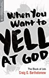 When You Want to Yell at God: The Book of Job (Transformative Word)