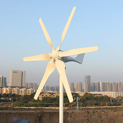 Freie Kraft 800W Windkraftanlage Windturbine mit MPPT Controller Laderegler 12V 24V 48 V Windrad Windgenerator Energie Turbinen 6 Blätter Windmühl (24 V, 6 Klingen)