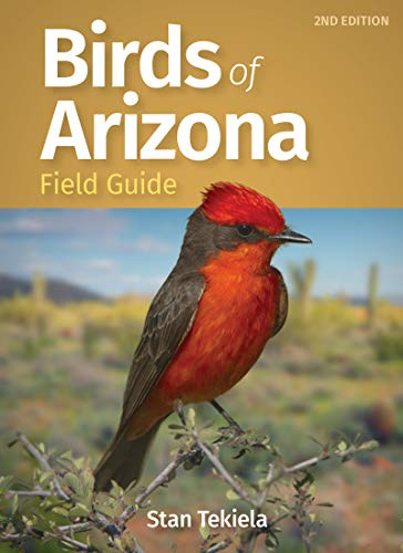 Birds of Arizona Field Guide (Bird Identification Guides) (English Edition)