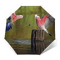 折りたたみ傘 美しいカップル鳥の日傘 遮光 紫外線遮蔽率99% 超耐風撥水 梅雨対策 携帯しやすい晴雨兼用
