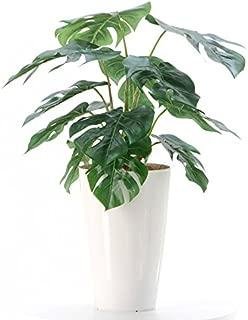 【銀と光触媒で空気をきれいに】プレミアム光触媒人工観葉植物 フェイクグリーン「モンステラ 12LVS 高さ50~55cm(白丸ポット)」NO92451(B60)