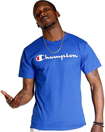 Champion Men's Classic Jersey Script T-Shirt, Surf the Web, XX-Large