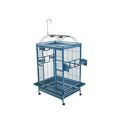 Bird   A&E Cage 8004836 Platinum Play Top Bird Cage with 1″ Bar Spacing, 48″ x 36″, Gym exercise ab workouts - shap2.com