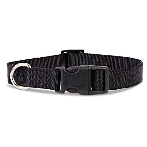 Woofery - Hundehalsband Katzenhalsband Nala - wasserabweisend M 35-50 cm Schwarz