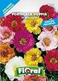 Sementi da fiore di qualità in bustina per uso amatoriale (PORTULACA DOPPIA IN MISCUGLIO)