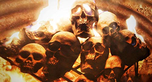 Replica Human Fire Pit Skull Gas Log for Wood Fireplace, Firepit, Campfire,...