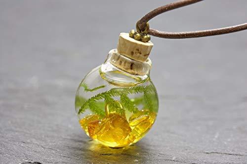 Unterwasserwelt Moos Bernstein echte Wasserpflanze Kette Lederband Aquarium echtes Borosilikatglas