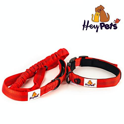 Hey Pets Premium Hundehalsband und Hundeleine, als 2-1 Set | rote Nylon-Leine und Halsband beides weich gepolstert | elastische Leine mit Anti-Zug-Funktion | Ruck-Dämpfer