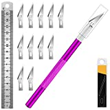 DIYSELF 1 Pcs Craft Knife Hobby Knife with 11 Pcs Stainless Steel Blades Kit, 1pcs Steel 15MM Ruler for Art, Scrapbooking, Stencil(Purple)