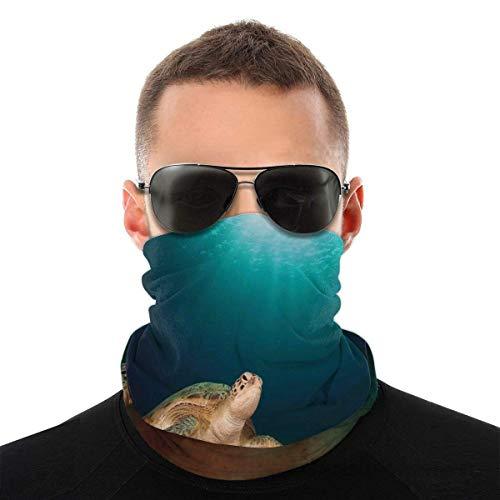 Yaxinduobao Gesichtsbedeckung Gesichtsbedeckung Gesichtsgesicht Schal Hals Gamasche Stirnband Halswärmer Kopfbedeckungen Kopfbedeckungen Sommer Dünne Atmungsaktive RaveSea Turtle