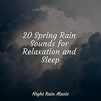 20 Spring Rain Sounds for Relaxation and Sleep