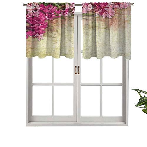 Hiiiman Rod Pocket Curtain Valances Vintage Illustration of Oleander Flowers Distressed Retro Background, Set of 2, 54'x36' Thermal Insulated for Living Room