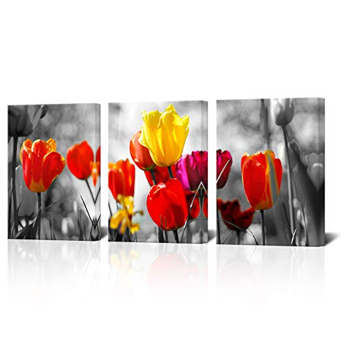 Biuteawal - Black and White Red Flower Canvas Wall Art Elegant Tulip Painting Prints Still Life Pictures for Bathroom Bedroom Modern Home Kitchen Decor Ready to Hang