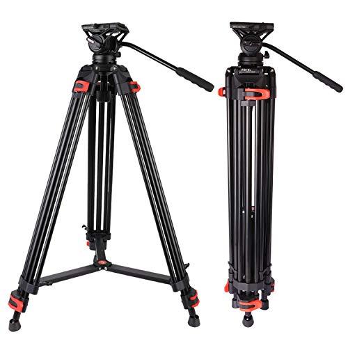 Video Tripod, Professional Heavy Duty Tripod with Fluid Head Aluminum Twin Tube 74.4 inch, Max Loading 17.6 LBS, for Canon Nikon Sony DSLR Camcorder Camera