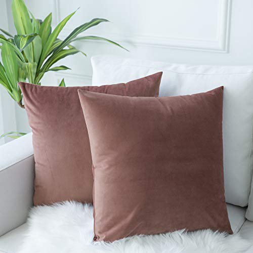 JUSPURBET Velvet Throw Pillow Covers for Sofa Couch Bed,Pack of 2 Throw Pillow Cases,Decorative Soft Pillowcases,24x24 Inches,Jam