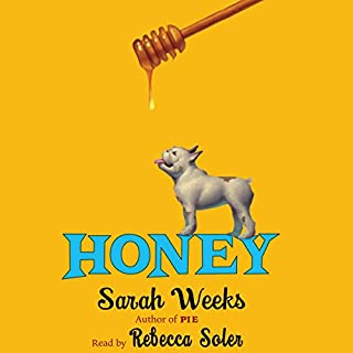 Honey                   By:                                                                                                                                 Sarah Weeks                               Narrated by:                                                                                                                                 Rebecca Soler                      Length: 3 hrs and 2 mins     37 ratings     Overall 4.6