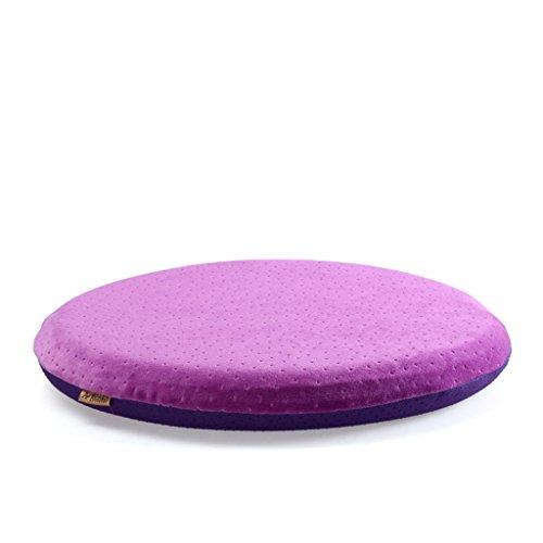 RFJJAL Cojines Redondos, tapizados, 42cm * 5cm con Cremallera extraíble, diseñados para aliviar el Dolor y la Comodidad. (Color : B)