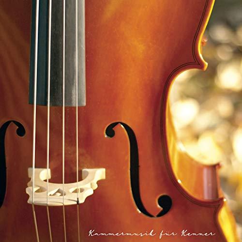 Große Sonate in A-Dur für Gitarre allein mit Begleitung einer Violine: 3. Andantino Variato, Scherzando