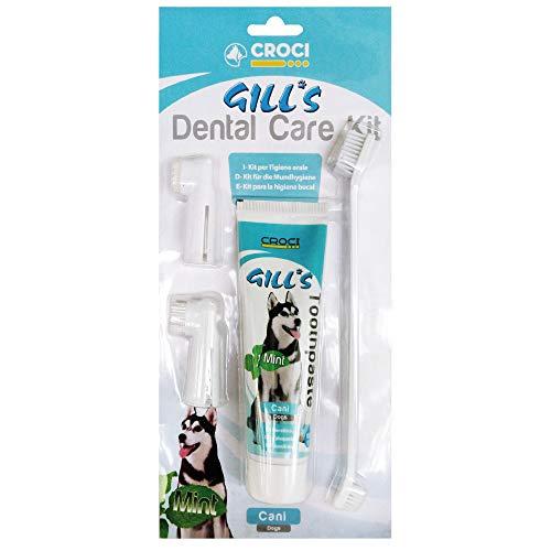 CROCI, Kit di igiene dentale per cani con doppio spazzolino da denti, dentifricio alla menta, 2 spazzolini da massaggio, cura dei denti antitartaro